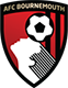 Sports massage by Intulo Health is used by AFC Bournemouth